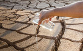 Parched Soil and Water — Stock Photo