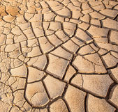 Parched Soil — Stock Photo