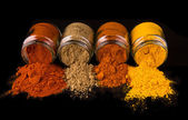 Indian Spices — Stock Photo