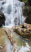Jungle Waterfall — Photo