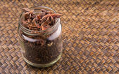 Star Anise Seed — Stock Photo
