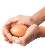 Hände halten hühnereier — Stockfoto