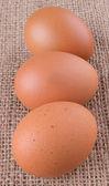 Huevo de gallina — Foto de Stock