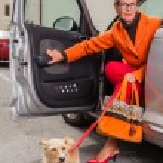 Stylish mature woman with her dog — Stock Photo
