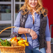 Beautiful woman shopping for groceries — Stock Photo #43313115
