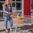 Attractive stylish woman shopping for groceries — Stock Photo #43726275