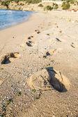 Footprints on beach — Stock Photo