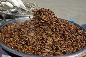 Boiled silkworm pupae (beondegi) — Stock Photo