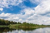 Flusslandschaft — Stockfoto