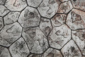 Texture of stone paving — Stock Photo