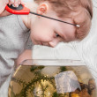 Boy catches fish in aquarium — Stock Photo