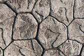 Texture of stone paving — Stock Photo