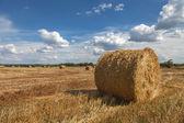 Beautiful countryside landscape — Stock Photo