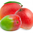 Mango fruit — Stock Photo #12205697