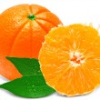 Orange — Stock Photo #15377453