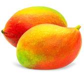 Vector mango — Stock Vector
