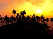 Palms on sand beach — Stock Photo