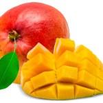 Постер, плакат: Mango fruit