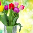 Tulip flowers — Stockfoto #41444839