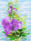 Fleur d'orchidée — Photo