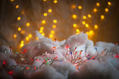 Holiday Lights — Stock fotografie