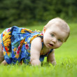 Stock Photo: Toddler Japanese-AmericLearns to Crawl
