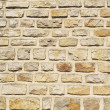 Building wall — Stock Photo #26208939