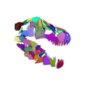 Abstract Fractured Tyrannosaurus Skull. Illustration — Stock Photo