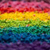 Kolor pigmentu — Zdjęcie stockowe