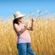 Examine wheat — Stock Photo #19865657