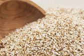 Popped Amaranth — Stock Photo