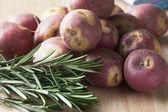 Apache Potatoes and Rosemary — Stock Photo