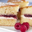 Spongecake and Raspberries - Stock Photo
