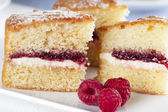 Spongecake and Raspberries — Stock Photo