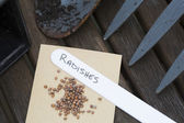 Radish Seeds for Gardening — Stock Photo