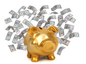 Golden piggybank and dollars — Stock Photo