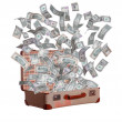Dollars flying out of old suitcase — Stock Photo #24574377
