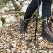 Nordic Walking details — Stock Photo
