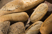 Group of breads — Stock Photo