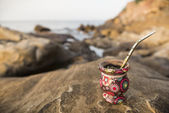 Mate in nature — Stock Photo