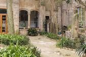 Valldemossa garden — Foto de Stock