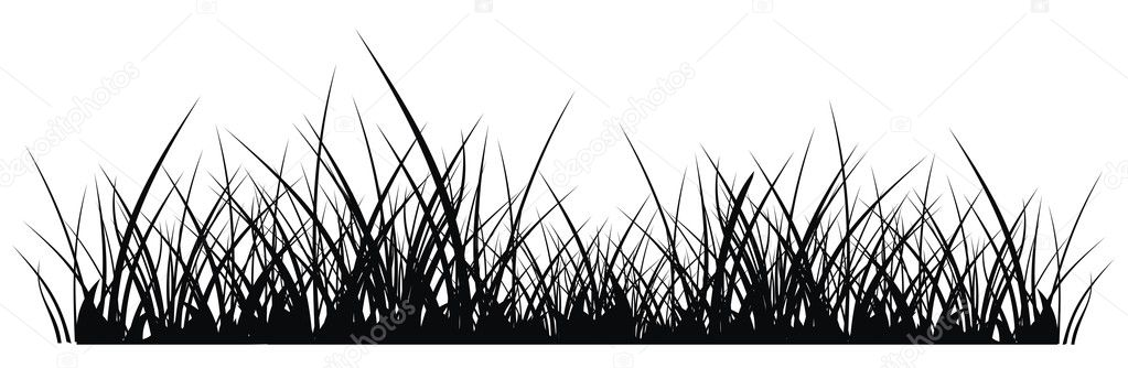 Tall grass silhouette vector