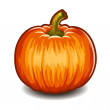 Pumpkin isolated on white background. Vector. — Stok Vektör