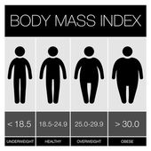 Body Mass Index Infographic Icons. Vector — Stock Vector