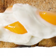 Egg toast - Foto de Stock