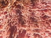 Fondo de textura de carne jaspeado — Foto de Stock