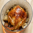 Golden roasted chicken — Stock fotografie