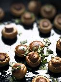 Sauteed mushrooms — Stock Photo