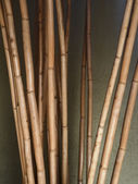 Bamboo poles — Stock Photo