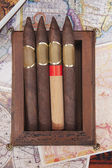 Four cigars in a box on a colorful background — Stok fotoğraf